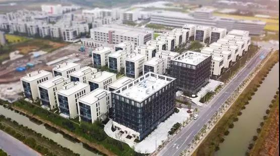 中国创新吸引全球目光,沃顿商学院全球调研交流会在张江举行
